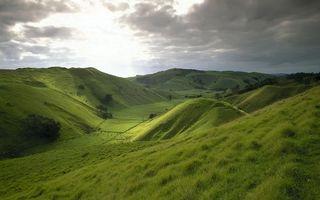 Photo free hills, field, grass