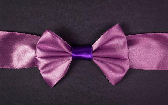 Photo free ribbon material, bow
