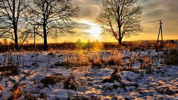 Фото бесплатно поле, трава, снег