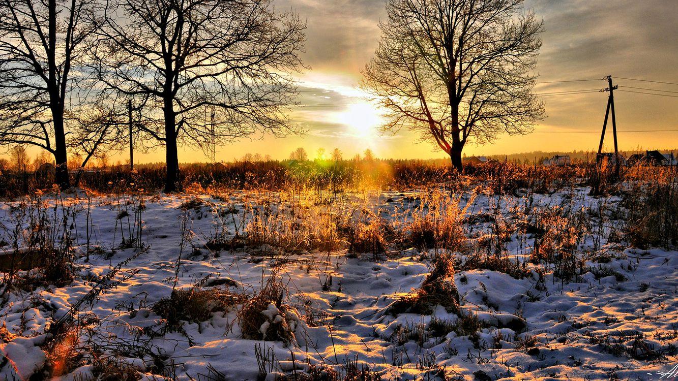 Фото бесплатно поле, трава, снег, солнце, день, деревья, разное, разное