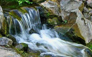 Бесплатные фото река, вода, водопад, камни, мох, трава, природа