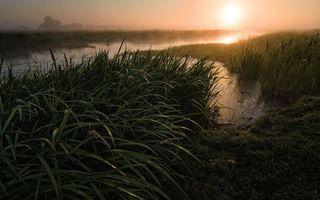 Фото бесплатно Восход, трава, природа