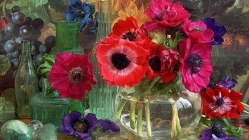 Бесплатные фото ваза,цветы,бутылка,вода,виноград,мак,разное