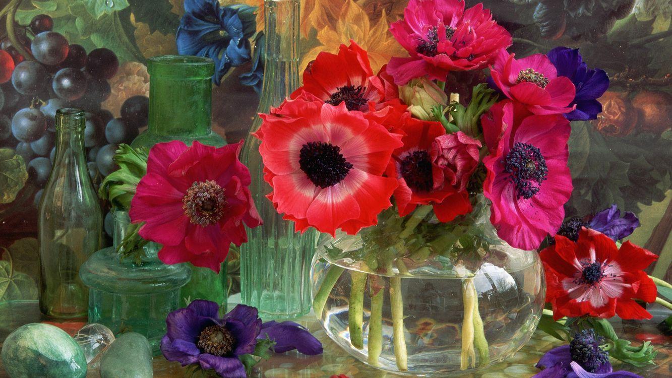 Фото бесплатно ваза, цветы, бутылка, вода, виноград, мак, разное, разное