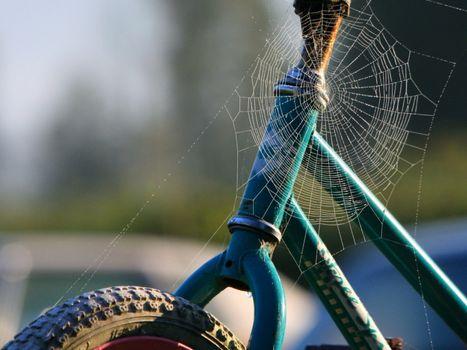 Бесплатные фото велосипед,рама,колесо,паутина,узор,ловушка,разное