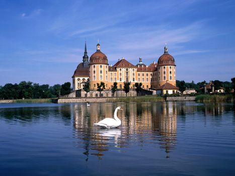 Бесплатные фото здания,старинные,вода,небо,лебедь,деревья,город