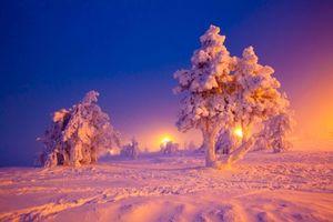 Фото бесплатно зимний пейзаж, деревья, снег, сугробы, после снегопада
