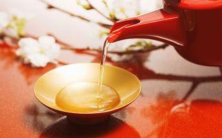 Бесплатные фото чай,вода,жидкость,тарелка,чашка,чайник,заварник