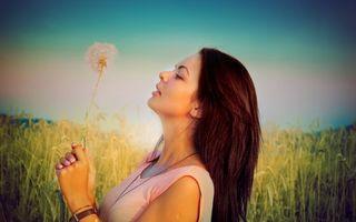 Фото бесплатно поле, одуванчик, волосы