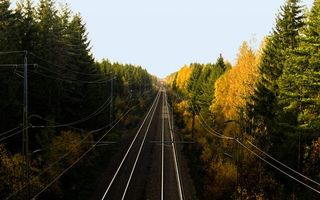 Фото бесплатно деревья, рельсы, дорога