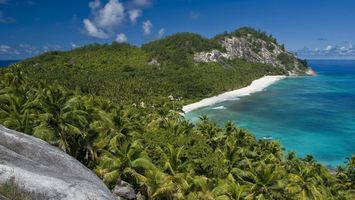 Бесплатные фото море,вода,пальмы,берег,песок,холмы,горы