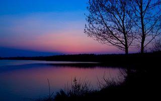 Фото бесплатно листья, пейзажи, вода