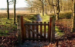 Фото бесплатно забор, тропинка, лес
