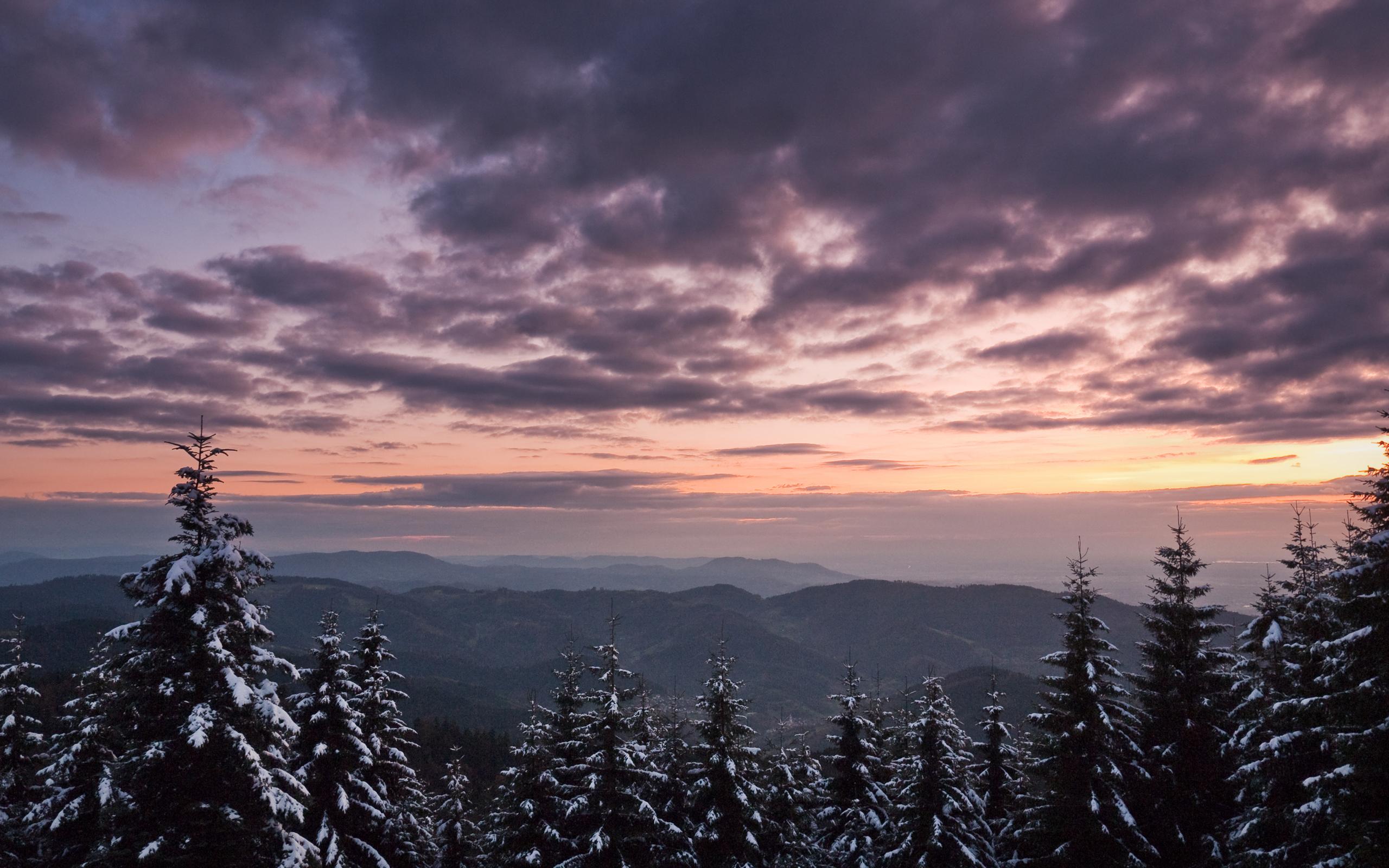 природа лес деревья ели гора облака небо  № 2757474 без смс