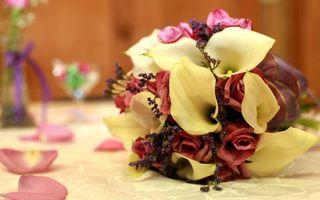 Бесплатные фото букет,розы,лепестки,травы,стол,скатерть,лента