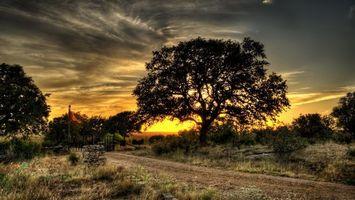 Фото бесплатно вечер, дорога, трава