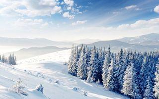 Бесплатные фото горы,зима,снег,елки,простор,сугробы,небо