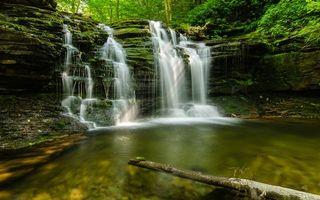 Бесплатные фото водопад, река, лес, камни, коряга, лето, природа