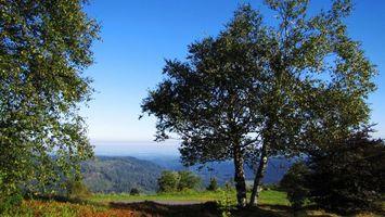 Фото бесплатно горы, дорога, трава, деревья, горизонт, небо