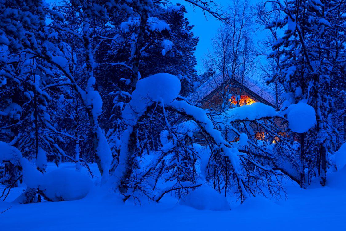 Фото бесплатно зима, лес, ночь, деревья, сугробы, домик, пейзаж, пейзажи