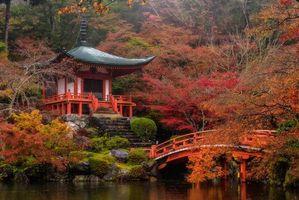 Бесплатные фото Храм в Киото,Япония,пейзаж