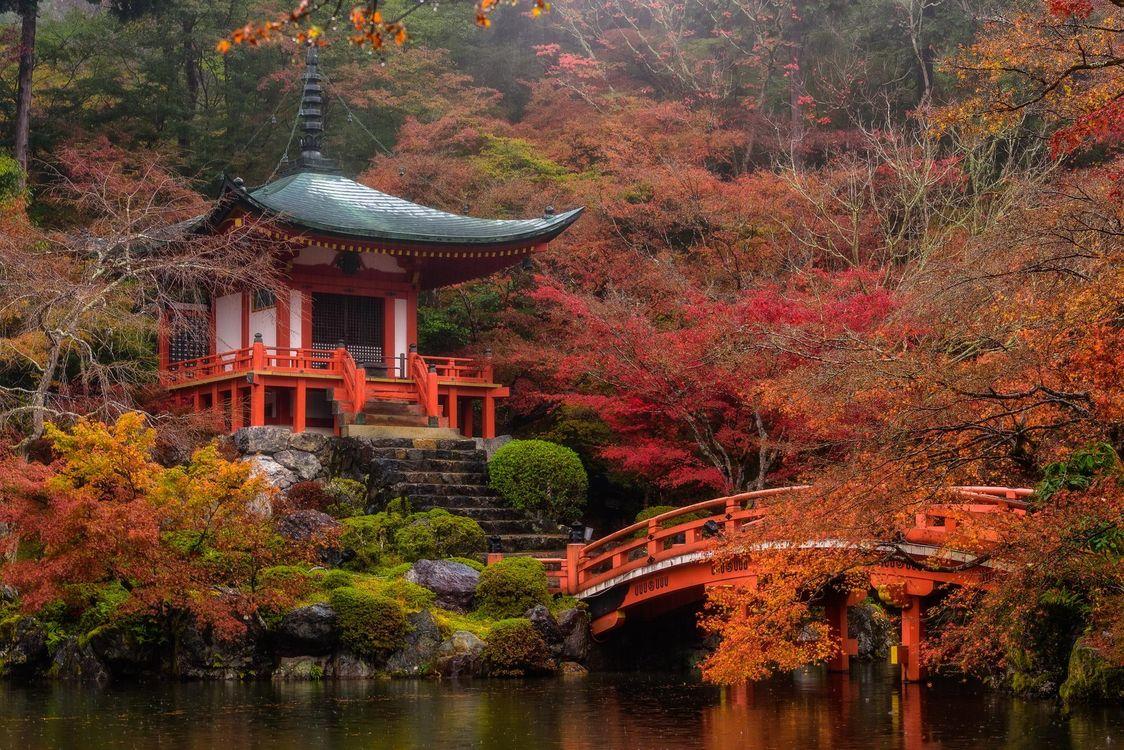 Фото бесплатно Храм в Киото, Япония, пейзаж, пейзажи