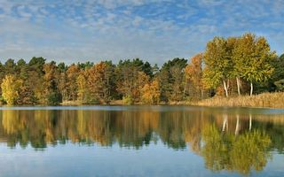 Бесплатные фото осень,озеро,гладь,отражение,деревья,лес,небо