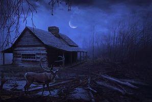 Бесплатные фото ночь,луна,дом,олень,пейзаж,art