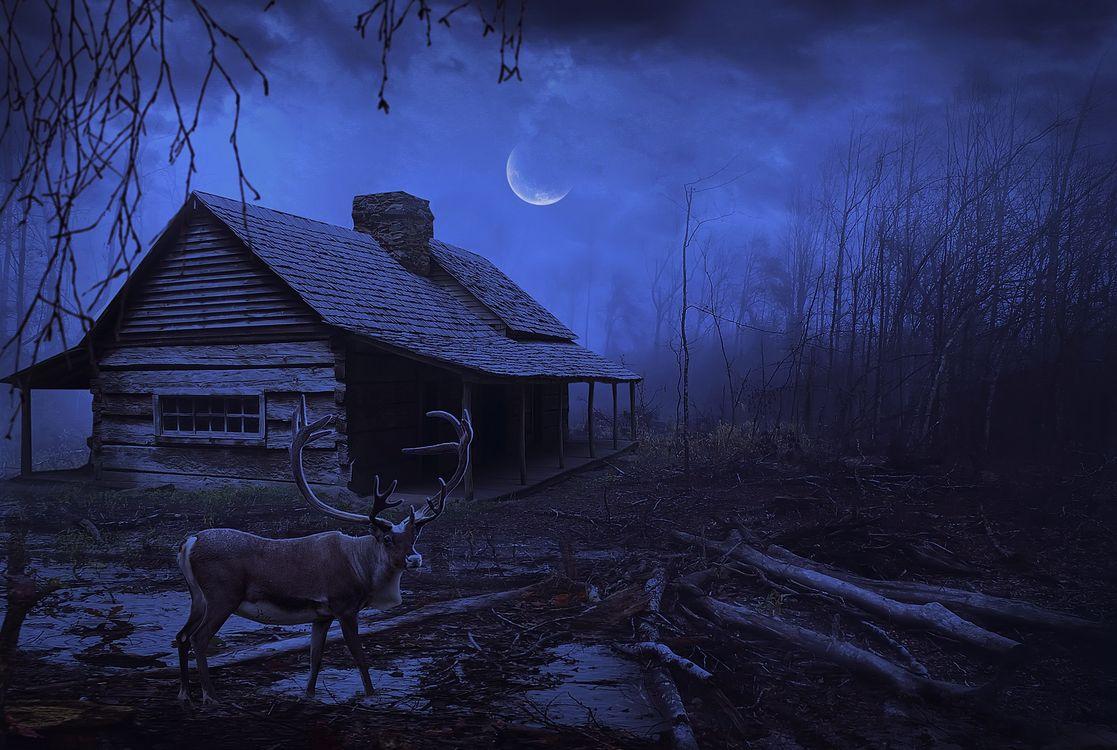 Фото бесплатно ночь, луна, дом - на рабочий стол