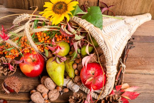 Photo free basket, autumn composition of vegetables and fruits, autumn leaves
