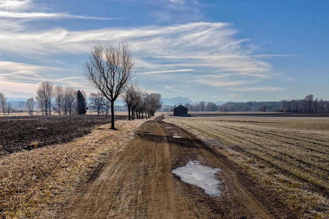 Фото бесплатно поле, осень, дорога, деревья, пейзаж - на рабочий стол