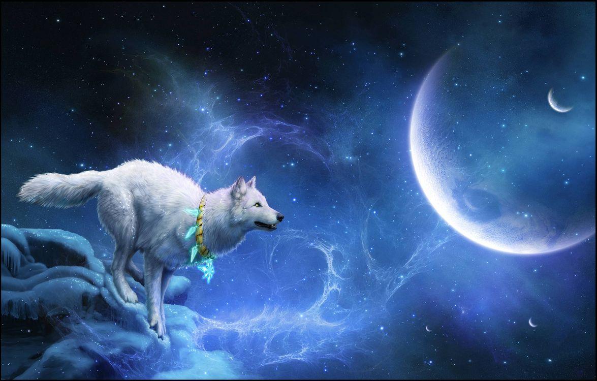 Фото бесплатно белый волк, планета, 3d, art, рендеринг - скачать на рабочий стол