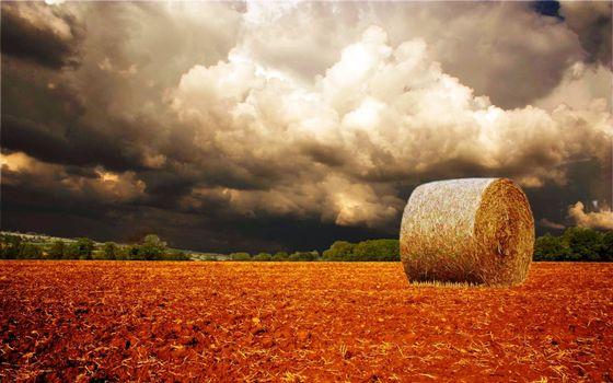 Photo free field, plowing, bale