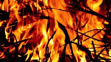 Обои костер, ветки, огонь, пламя, языки