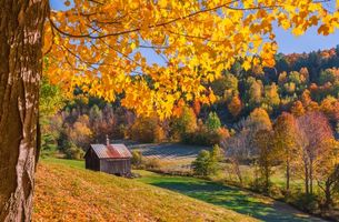 Обои New England, Vermont, осень, холмы, поля, дома, деревья, пейзаж