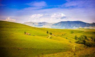 Фото бесплатно деревья, дома, холмы