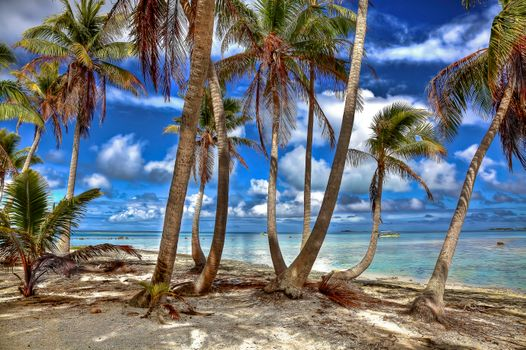 Фото бесплатно Французская Полинезия, Тихий океан, пейзаж