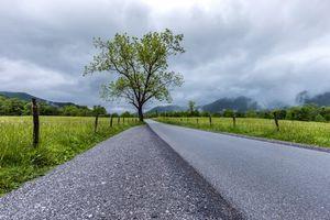 Фото бесплатно Национальный парк Грейт-Смоки, поле, дорога
