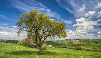 Бесплатные фото поля,холмы,деревья,дома,пейзаж,Италия