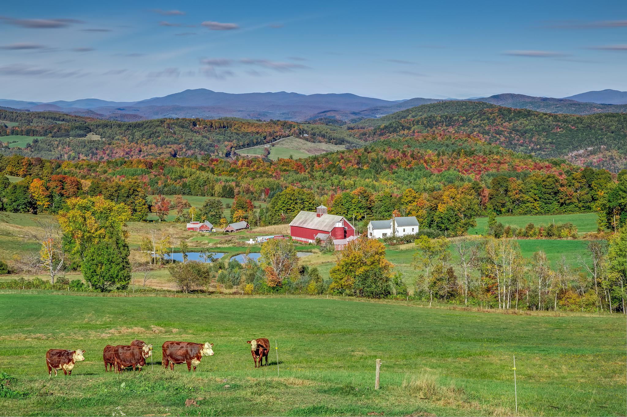 обои Нью-Гемпшир, Новая Англия, Вермонт, поля картинки фото