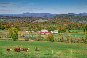 Бесплатные фото Нью-Гемпшир,Новая Англия,Вермонт,поля,горы,холмы,пастбище