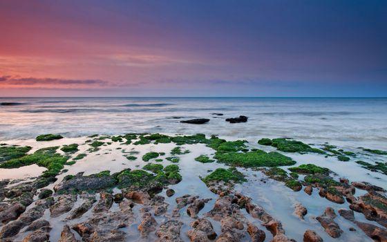 Бесплатные фото берег,камни,рифы,растительность,море,горизонт,небо