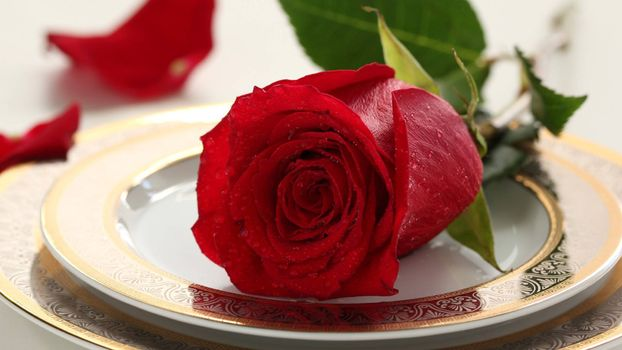 Фото бесплатно тарелки, роза, красный