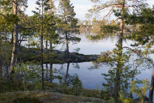 Бесплатные фото Карелия,озеро,деревья