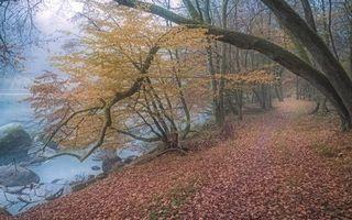 Заставки осень, дорога, водоём