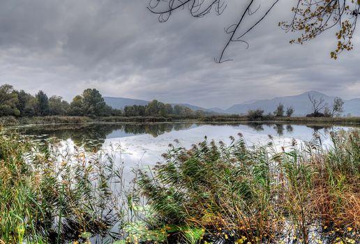 Бесплатные фото озеро,тучт,деревья,растительность,природа