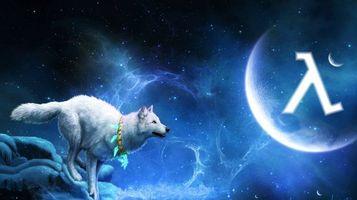 Фото бесплатно белый волк, 3d, art