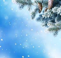 Фото бесплатно шишки, Новый Год, Рождество