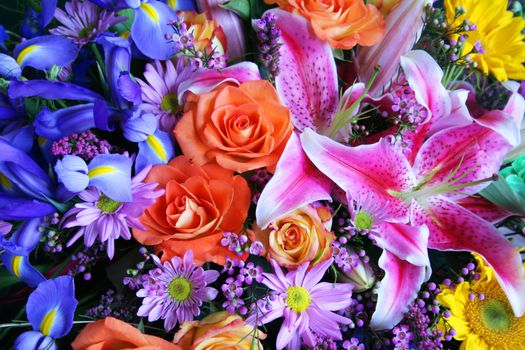 Заставки розы, лилии, цветы