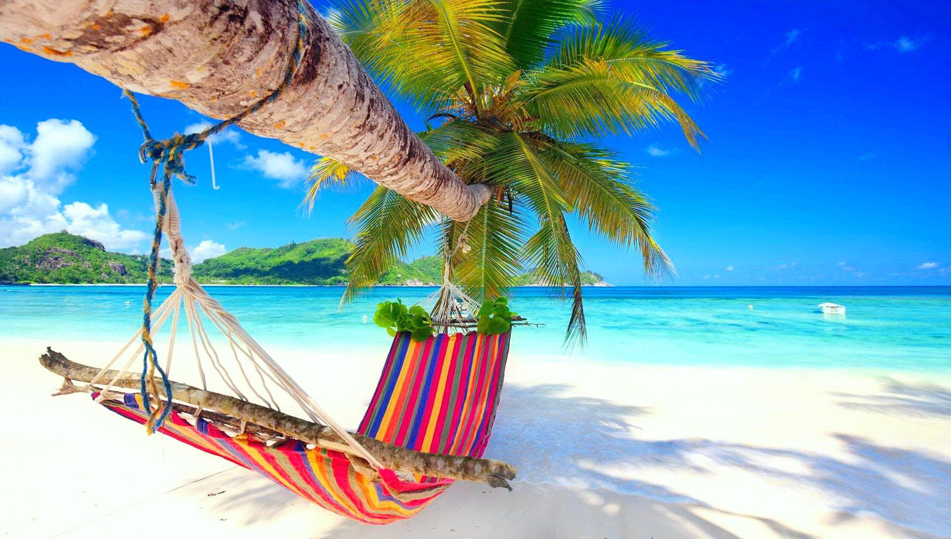 обои море, остров, пальма, пляж картинки фото